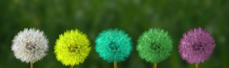 5 ideja Viktora Frankla koje će vam promijeniti život