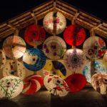 Ikigai – smisao života kroz četiri pitanja