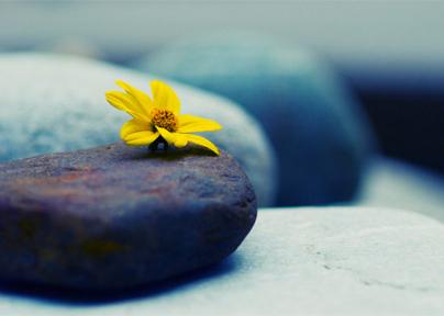 kako se nositi sa smrću